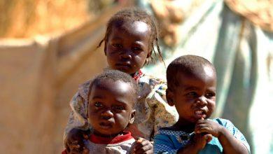 Photo of 120 طفلا يموتون يوميًا في السودان بسبب نقص التغذية