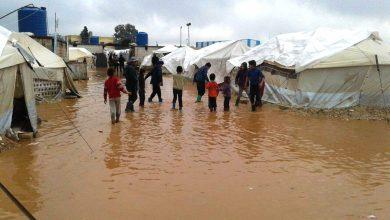 Photo of شارك في إغاثتهم..5791 عائلة سورية على حافة الموت بالمخيمات