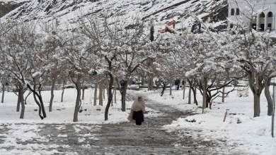 Photo of مصرع 105 أشخاص وإصابة 96 آخرين بسبب الثلوج في باكستان