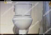 صورة صناعات لكل يوم : الحمام