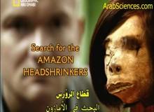البحث عن قطاع الرؤوس في الأمازون