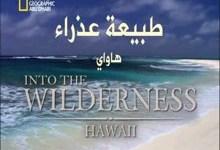 طبيعة عذراء : هاواي