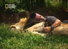 صحبة خطيرة : الحيوانت المتوحّشة