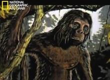حقيقة أم زيف : رجل سومطرة القرد