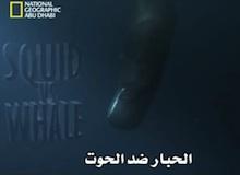 الحبار ضدّ الحوت
