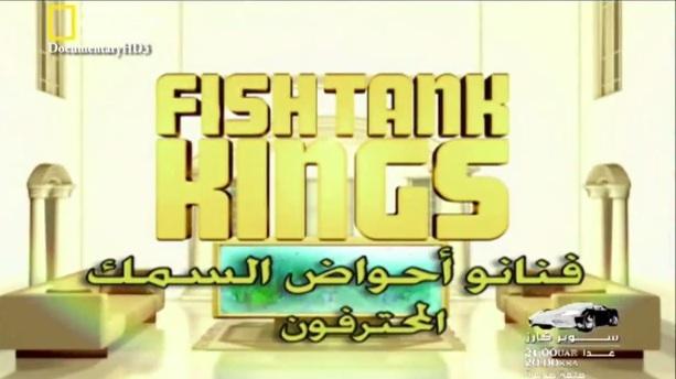 فنانوا أحواض السمك : المحترفون
