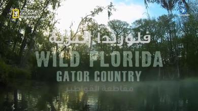 فلوريدا البرية HD : قاطعة القواطير