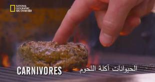قصة الغذاء HD : الحيوانات اكلة اللحوم