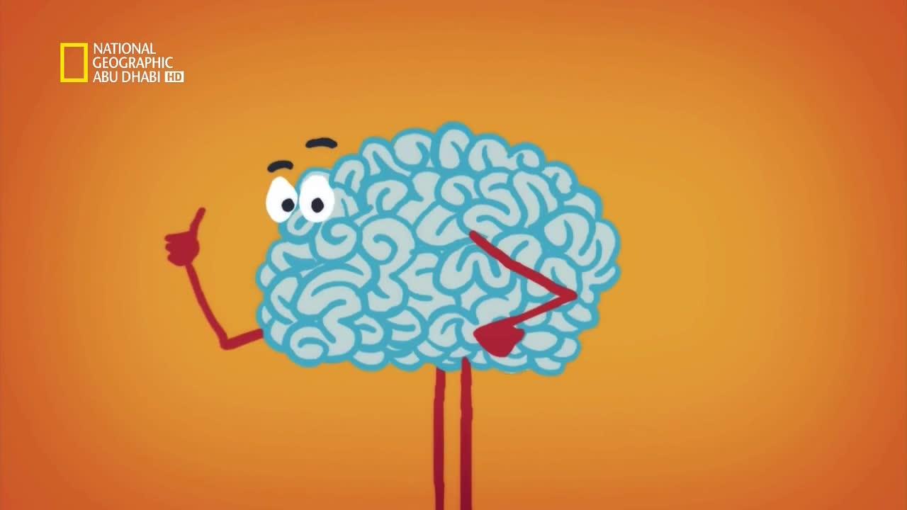 ألعاب العقل HD : مواجهة العقل و الجسد - موقع علوم العرب