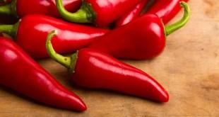 مقال – 6 أطعمة لحرق المزيد من الدهون