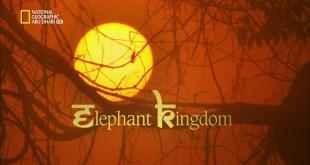 خفايا البراري الهندية HD : مملكة الفيلة