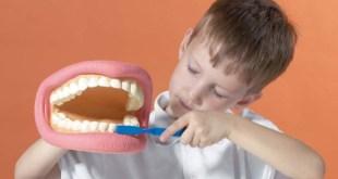 مقال – 7 نصائح لتحافظ على أسنانك مدى الحياة