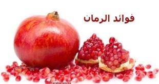 (ملف) أطعمة تنظف الشرايين بشكل Pomegranate.jpg?resize=310,165&ssl=1
