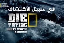 صورة في سبيل الاكتشاف HD : كمين القرش الأبيض العظيم