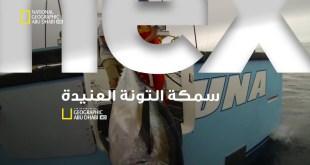 سمكة التونة العنيدة HD : مهمة الصيد