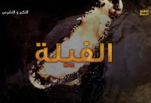 صورة الأكبر و الأشرس HD الموسم 1 – حلقة 2 الفيلة