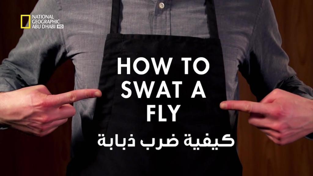 كيف نفعل الأشياء مع ديفيد ريس : ح3 كيف نضرب ذبابة - موقع علوم العرب