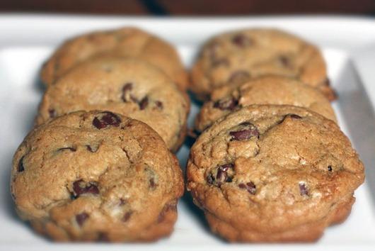 البسكويت بالشوكولاته يُعتبر حلوى رسمية في ولاية ماساتشوستس الأمريكية