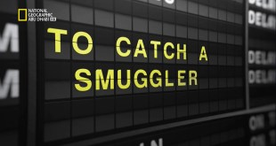 القبض على المهربين : مطار جون إف كينيدي HD - تهريب الهيروين