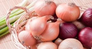 مقال - منافع البصل الصحية تنسيك رائحته المنفرة