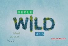 شبكة العالم البريّة