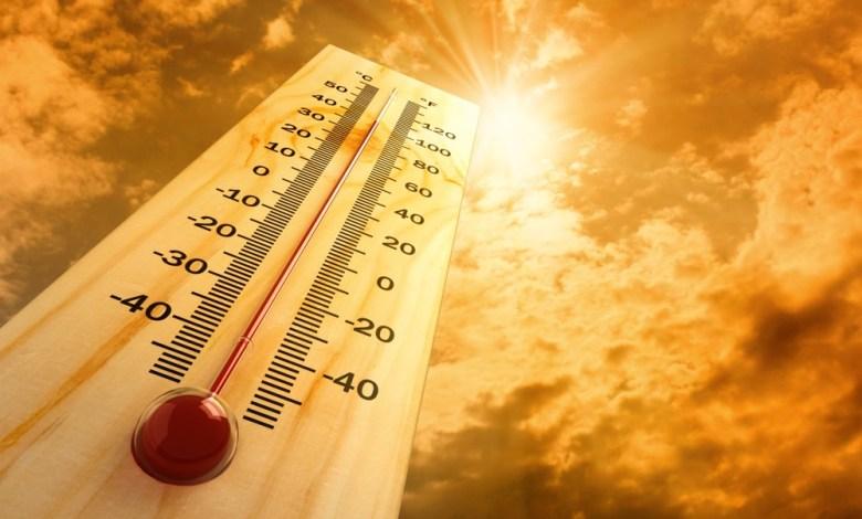 مقال - كيف تتعامل مع درجات الحرارة المرتفعة؟