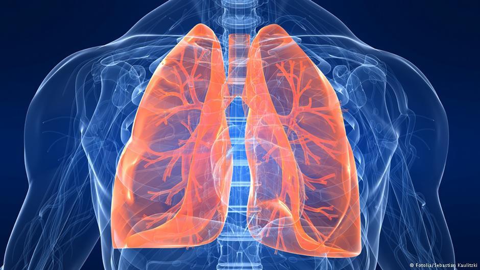 مقال - 5 نصائح لتدريب الرئة و التغلب على ضيق التنفس - موقع علوم العرب