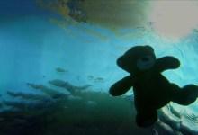 صورة مقال – كيف تحمي طفلك من الغرق؟