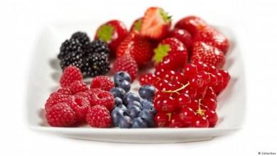 مقال - لماذا ينصح بتناول الفواكه صباحاً؟