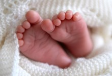 صورة مقال – أول حالة إنجاب لطفل باستخدام مبيض مجمد قبل البلوغ !!