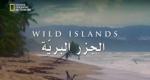الجزر البريّة HD : جزر الفوكلاند