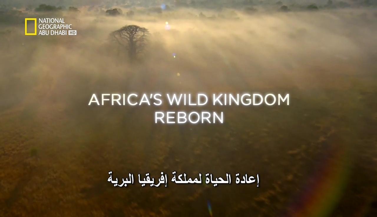 إعادة الحياة لمملكة إفريقيا البرية HD – الحلقة 5 - موقع علوم العرب