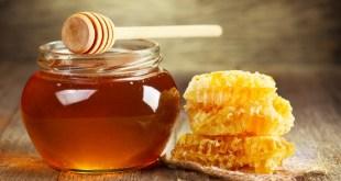 مقال – العسل .. حقائق غذائية و فوائد و محاذير !