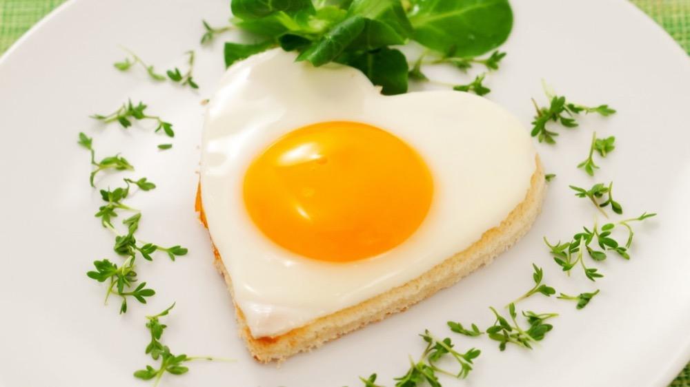 مقال – أكثر من تناول البيض يومياً لهذه الأسباب