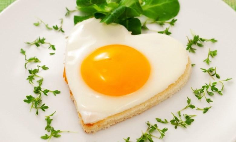 مقال - أكثر من تناول البيض يومياً لهذه الأسباب