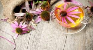 مقال – علاج طبيعي لنزلات البرد من مطبخك المنزلي!