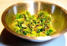صورة مقال – ميزات و خصائص الأشخاص النباتيين Vegetarians