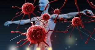 مقال – 9 عادات يومية تهدد جهاز المناعة