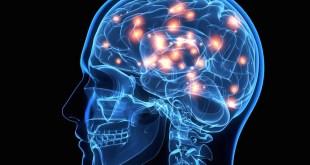 مقال - نصائح و إرشادات مهمة لصحة الدماغ