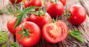 مقال - الطماطم كنز من الفوائد الصحية.. تعرف عليه !