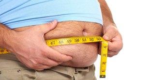 مقال – الدهون الحشوية : أين تكمن خطورتها ؟