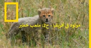 مولود في أفريقيا - الحلقة 2: ملعب خطير