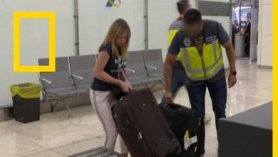 أمن المطارات : مدريد : الجدة المهربة
