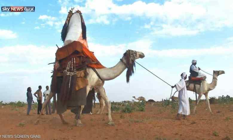 عرس البادية في السودان