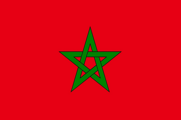 arabs countries flags - Morocco