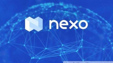 صورة اتهام منصة Nexo بتصفية حسابات المستخدمين بعد هبوط العملات الرقمية… التفاصيل هنا
