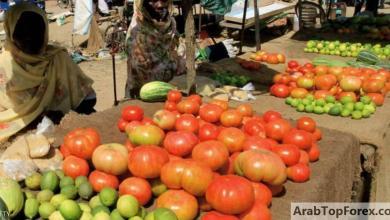 """صورة السودان وصندوق النقد يتوصلان لاتفاق """"الإصلاحات الهيكلية"""""""
