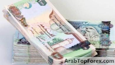 صورة الاحتياطي النقدي بمصرف الإمارات المركزي يسجل 355 مليار درهم في أغسطس