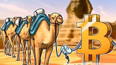 صورة ارتفاع استخدام بيتكوين في مصر وسط الركود الاقتصادي