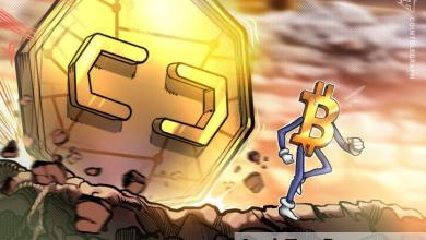صورة العملات البديلة تحقق مكاسب من رقمين حتى مع انخفاض سعر بيتكوين إلى ٤٢٥٠٠ دولار